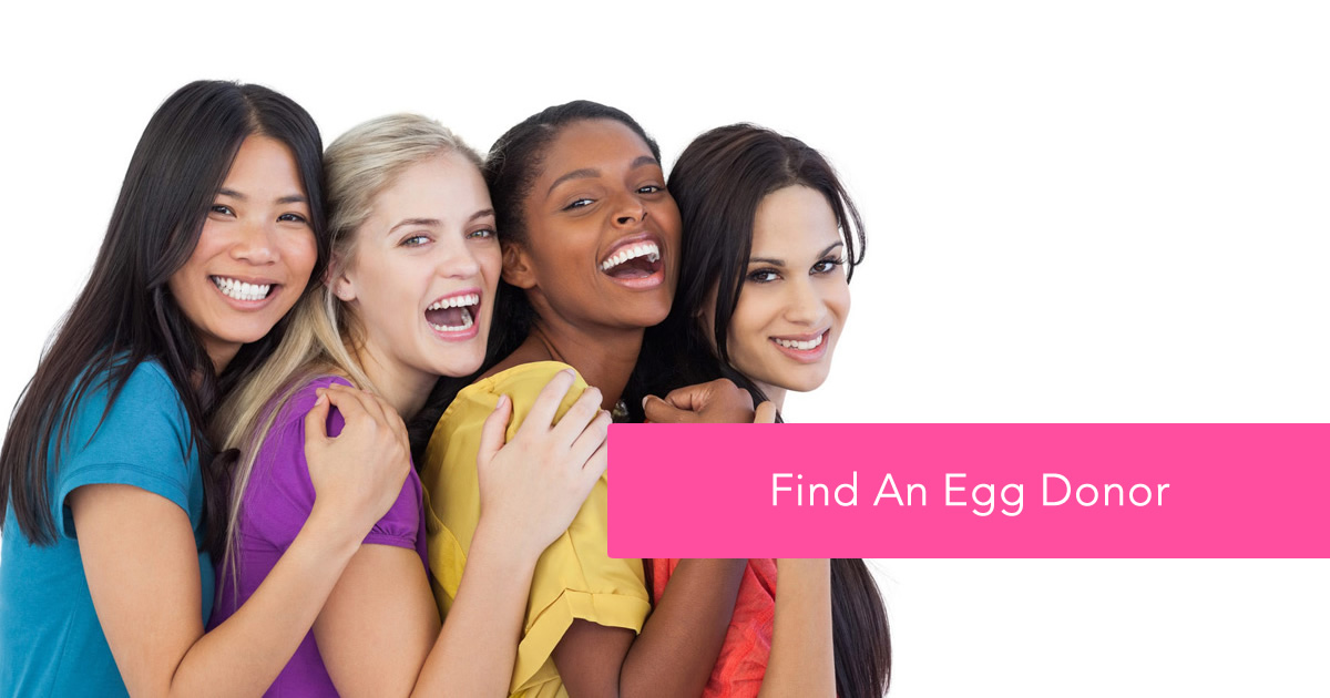 Find an Egg Donor
